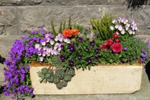 Blumenkasten aus Terracotta