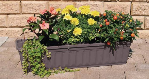 blumenkasten 100 cm anthrazit mit wasserspeicher made in germany bio balkongarten blog. Black Bedroom Furniture Sets. Home Design Ideas