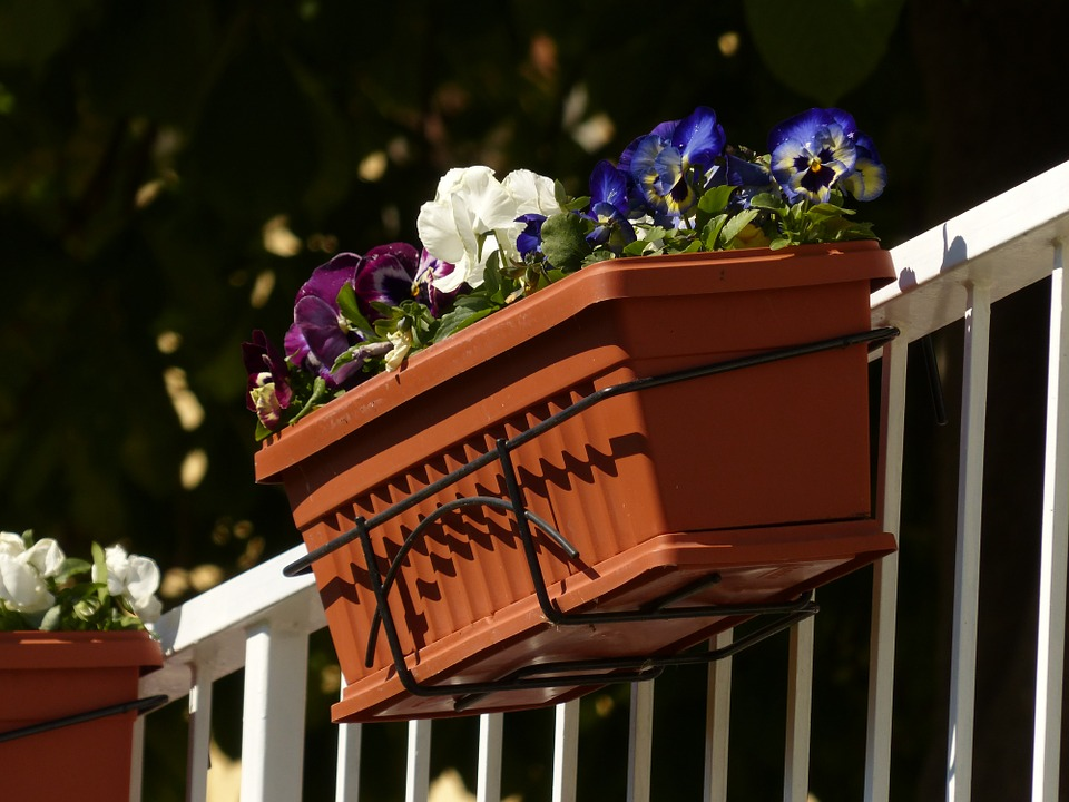 Blumenkasten Kaufen Die Wichtigsten Infos Tipps