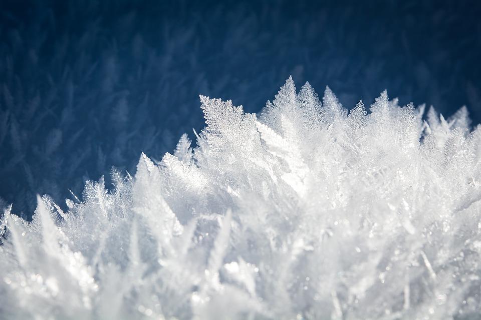 ᐅ Winterharte Krauter Fur Den Balkon Ratgeber Tipps