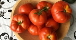 reife Balkon Garten Tomaten nach Ernte