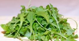Rucola frisch Salat