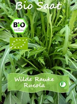Wilde Rauke mehrjährig 70 BIO Samen (DE-ÖKO-006) - 1