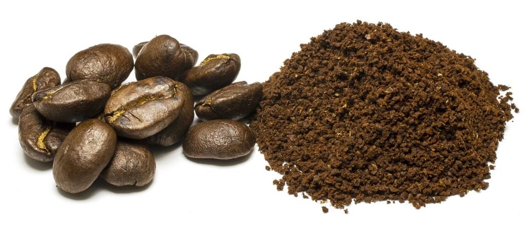 Kaffeesatz als Dünger für Orchideen